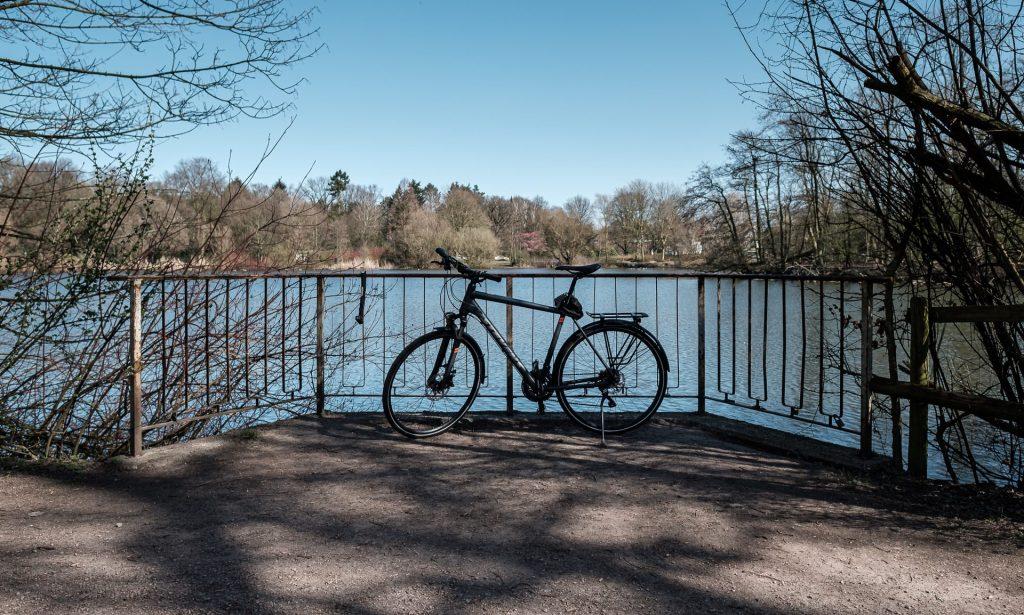 Am Bramfelder See.