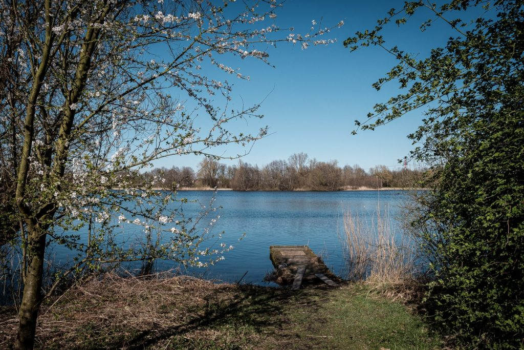 Hier findet im Sommer das Wutzrock Festival statt: Der Eichbaumsee.